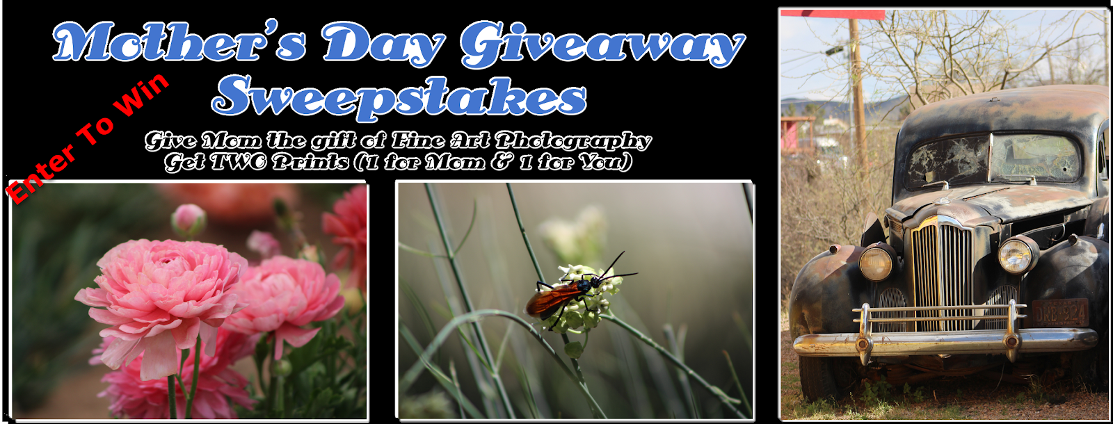 Mother's Day Giveaway - 2 Free FineArt Prints