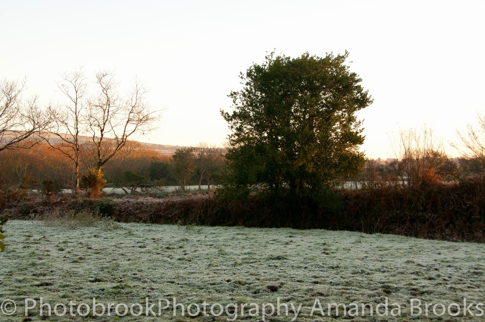 Frosty morning in Cornwall