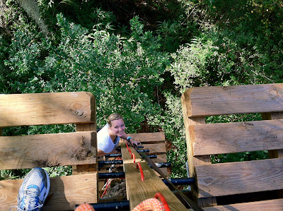 Tallahassee Museum Tree-to-Tree Adventure Zipline