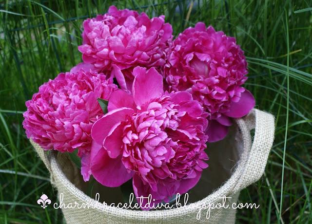 bouquet of pink peonies in a burlap bushel basket