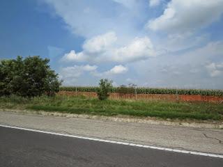 נוף הונגרי
