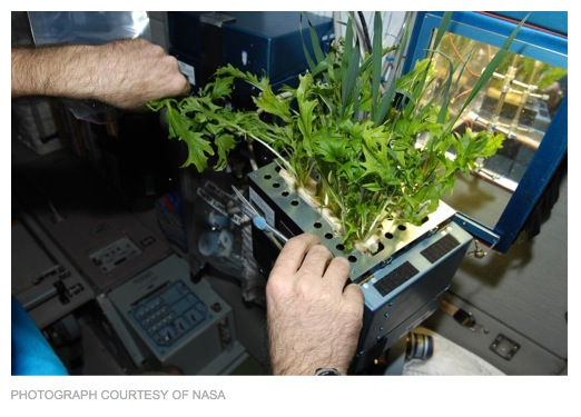 http://news.nationalgeographic.com/news/2014/01/140121-space-greenhouses-plants-astronaut-mars/