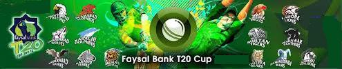 Faysal Bank Super Eight Cricket T20 2013 Live Streaming HD Video