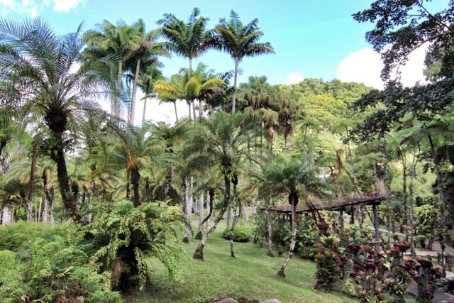 Jardín de Balata