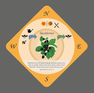 The blackberry playing card for the Food Forest card game based on Permaculture principles