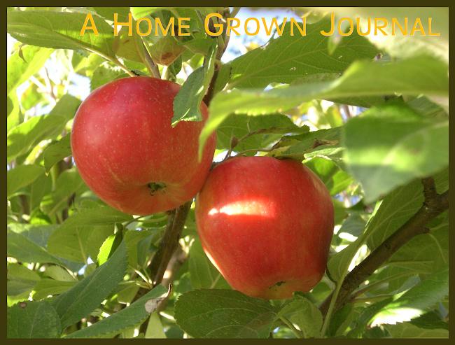 A Home Grown Journal