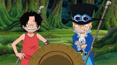 One Piece 494