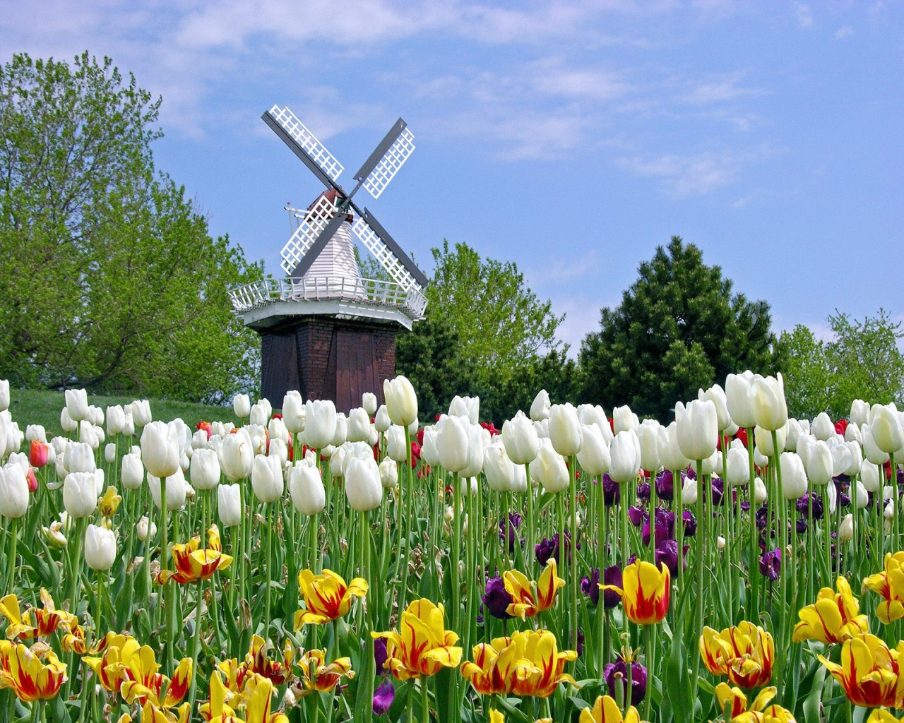 netherlands tourist attractions in holland tourist
