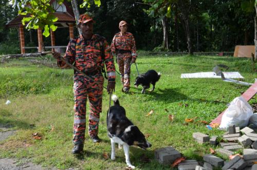 Pasukan Mencari Guna Anjing Pengesan