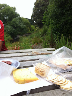 A pile of cheese and crackers on a picnic table.