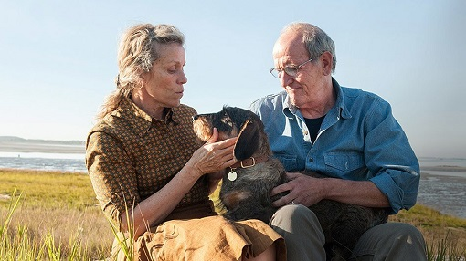 Frances McDormand y Richard Jenkins en Olive Kitteridge
