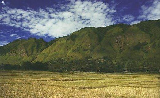 Pendudukyang hidupdi daerah pegunungan biasanya membuat rumah