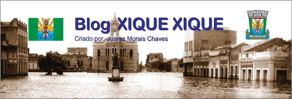 Blog  XIQUE XIQUE