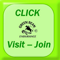 Click Here to visit Green Bean