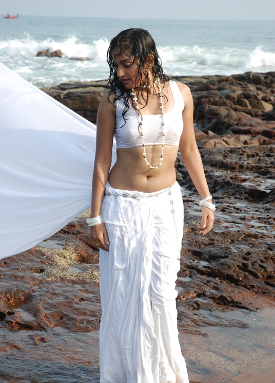 madhavi latha hot saree