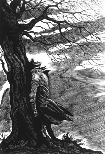 violence in wuthering heights 2018-7-19 dive deep into emily brontë's wuthering heights with extended analysis, commentary, and discussion.