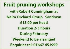 Fruit pruning workshops February