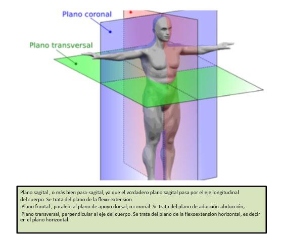 Biomecanica miembros superiores