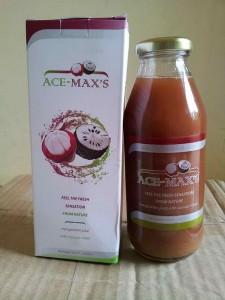 obat tradisional asam urat ace maxs
