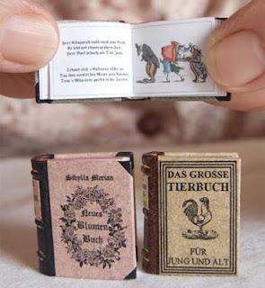 libro-miniatura