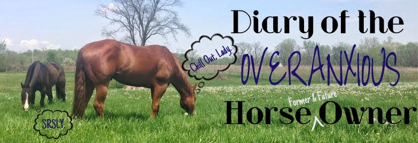 Diary of the Overanxious Horse Owner