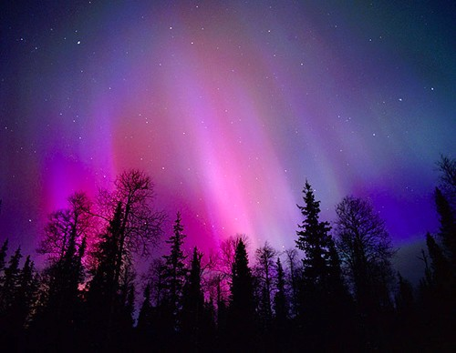 Blue And Purple Aurora Borealis The aurora borealis