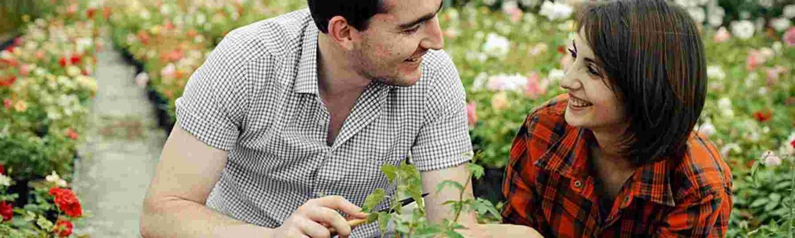 como cuidar tu matrimonio como un jardin