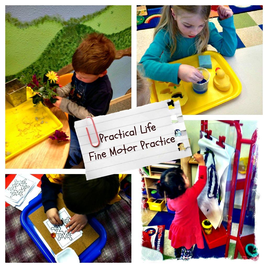 for Montessori fine motor skills