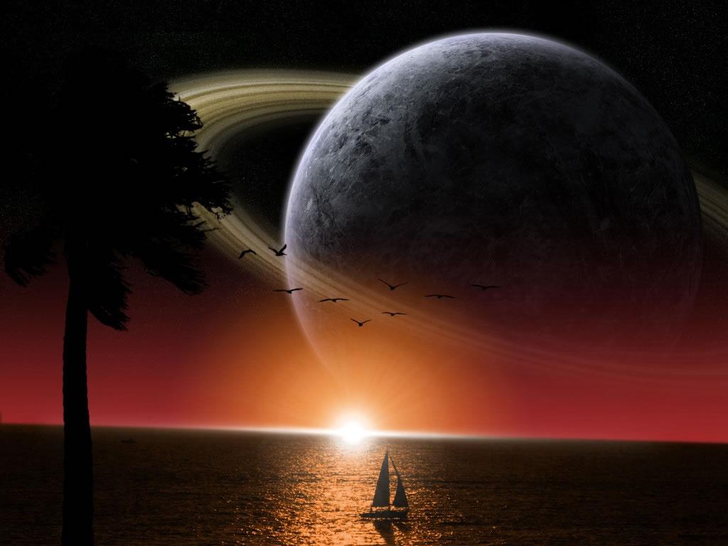 Eva 6 perra tira de puesta de sol