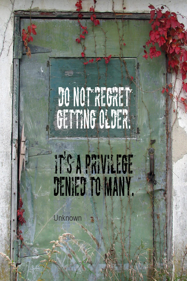 visual quote - image quotation for LIFE - Do not regret getting older. It's a privilege denied to many. - Unknown