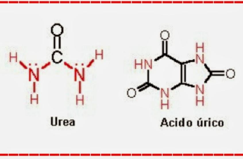 medicamentos para tratar la gota pulpo y acido urico acido urico alto tratamiento medicamentoso