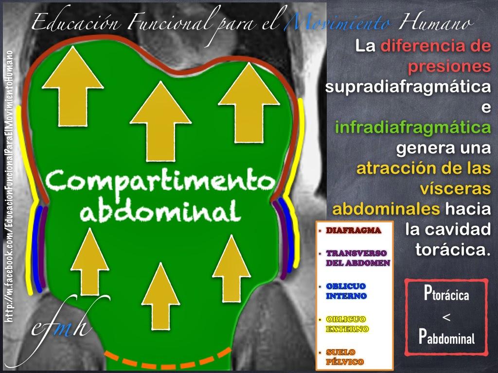 Diferencia de presiones entre el compartimento abdominal y el ...