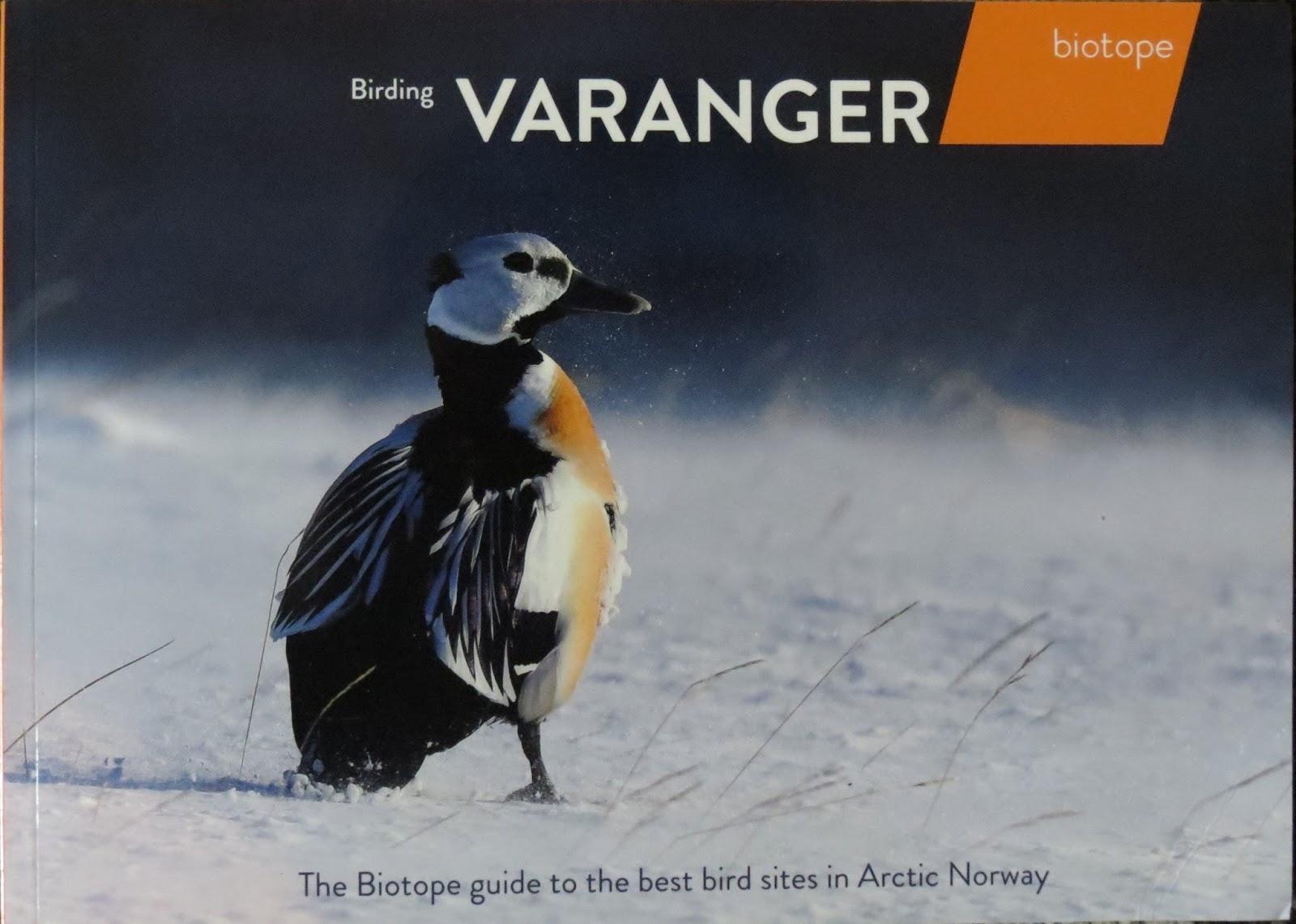 UK400ClubRareBirdAlert: Birding Varanger | 1600 x 1142 jpeg 195kB