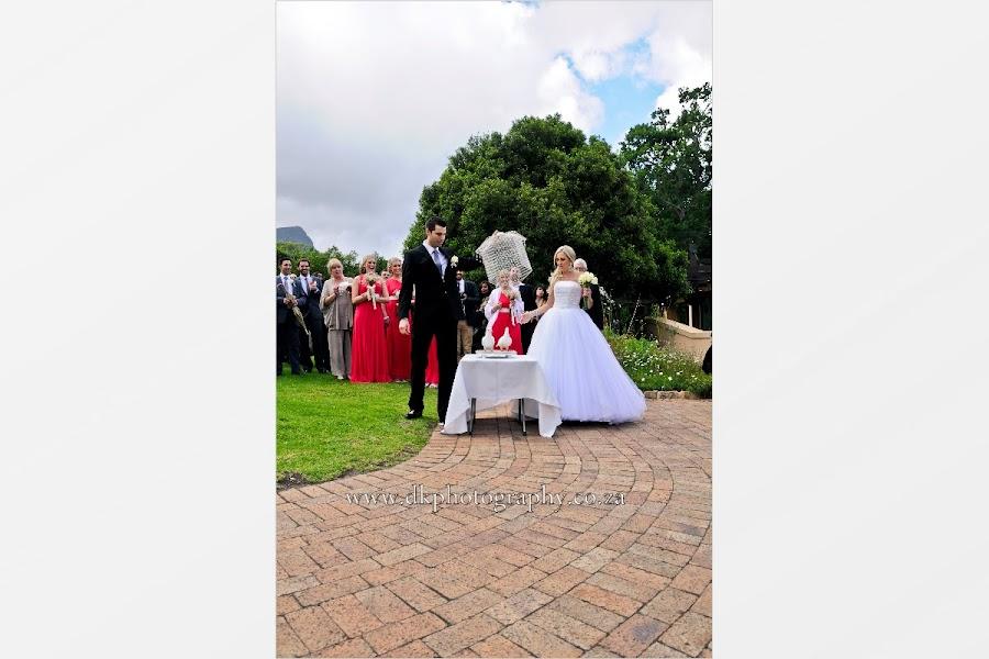 DK Photography Slideshow-1914 Tania & Josh's Wedding in Kirstenbosch Botanical Garden  Cape Town Wedding photographer