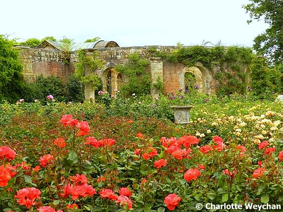The Walled Rose Garden Has More Than 4 000 Plants As Well Its Own Hever Castle