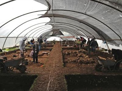 Feijões-fava de 10 mil anos atrás são descobertos na região da Galiléia em Israel