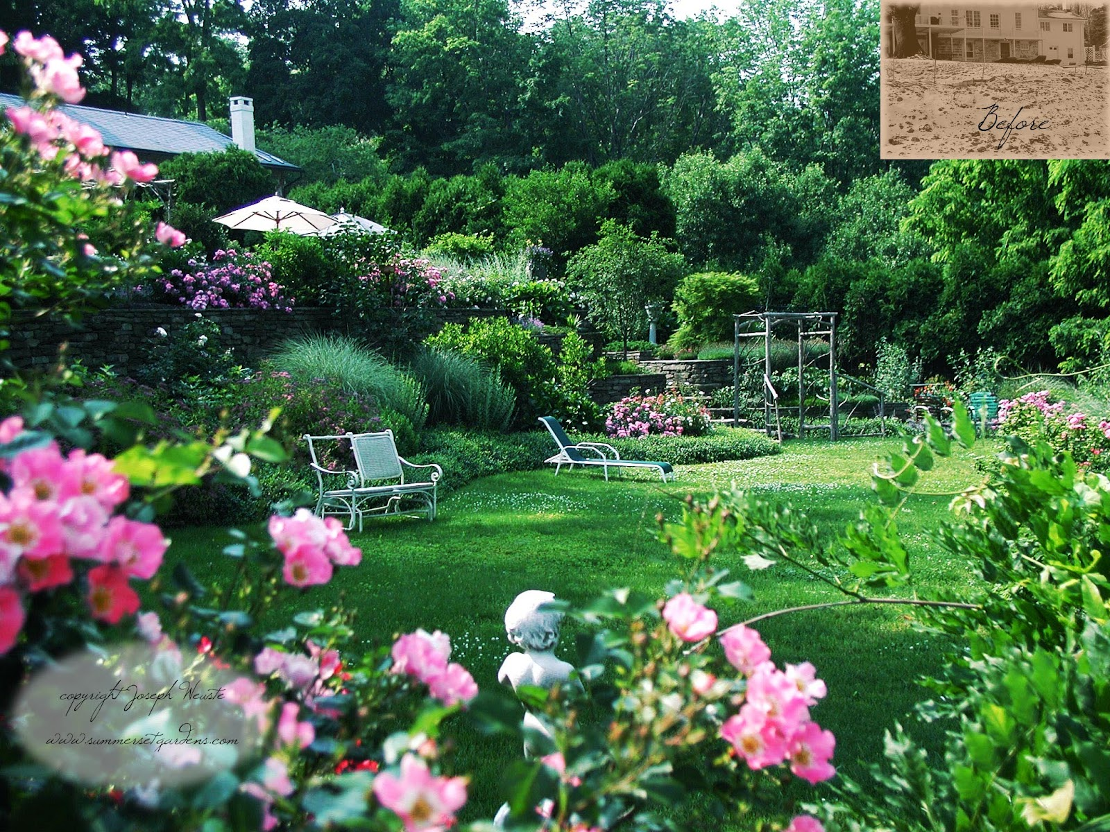 Garden design lush country garden for Rose garden design