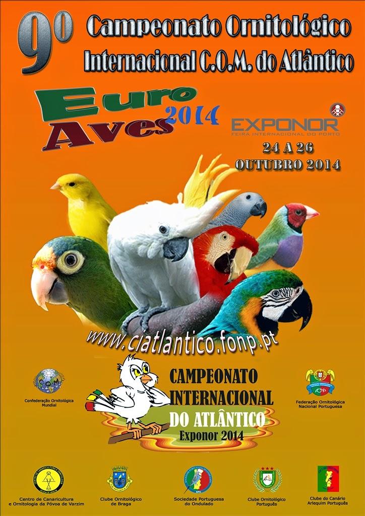 Internacional Atlântico 2014