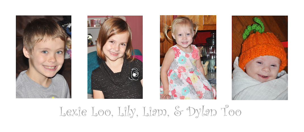 Lexie Loo, Lily, Liam, and Dylan Too!