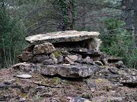 Coberta de la barraca de vinya de la Bauma dels Gubians