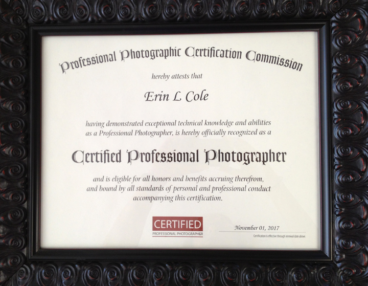 Treasure Photography Certified Professional Photographer Cpp