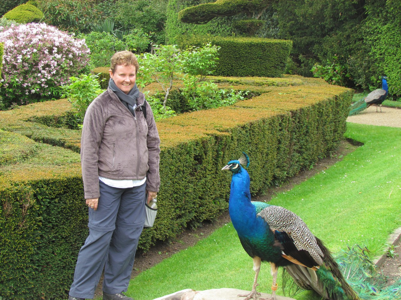 Gratitude grace growth warwick castle for Gardening 4 you warwick