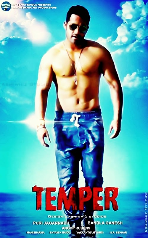 Temper 2016 Hindi Dubbed 480p HDRip 365mb
