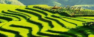 un voyage Laos et un voyage Vietnam