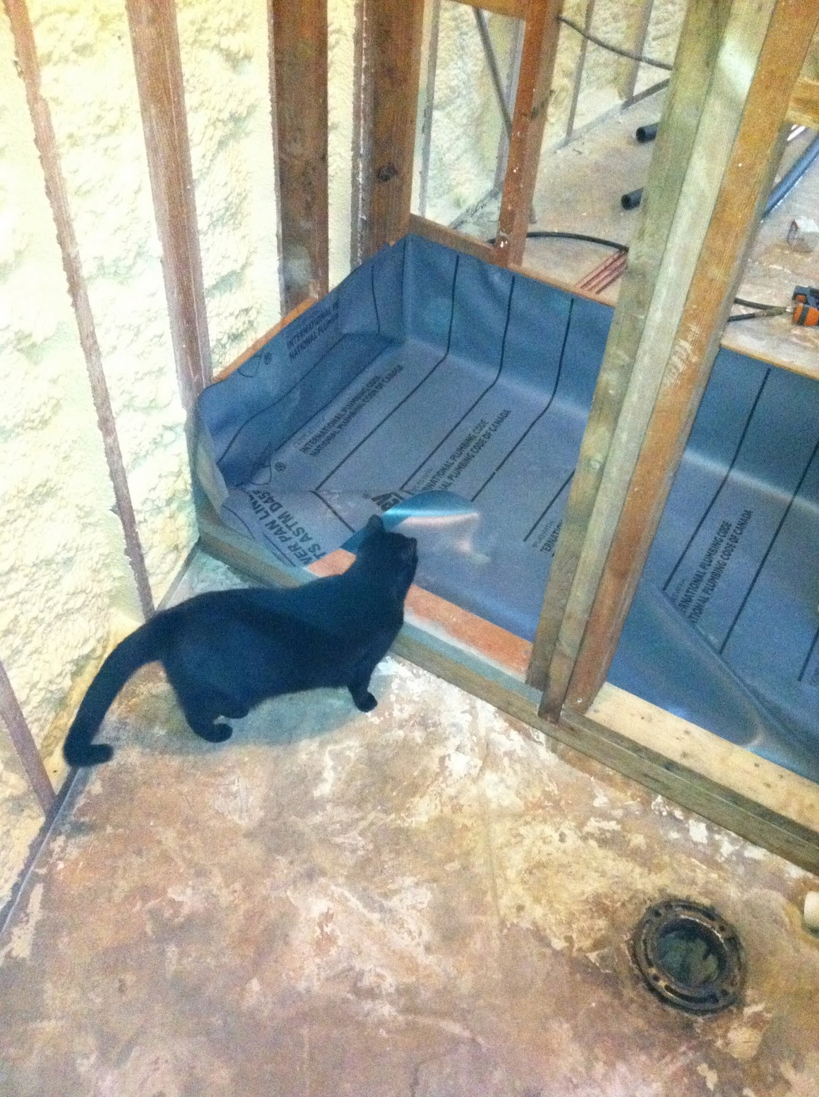 My Texas Round House: Shower Framing Continued