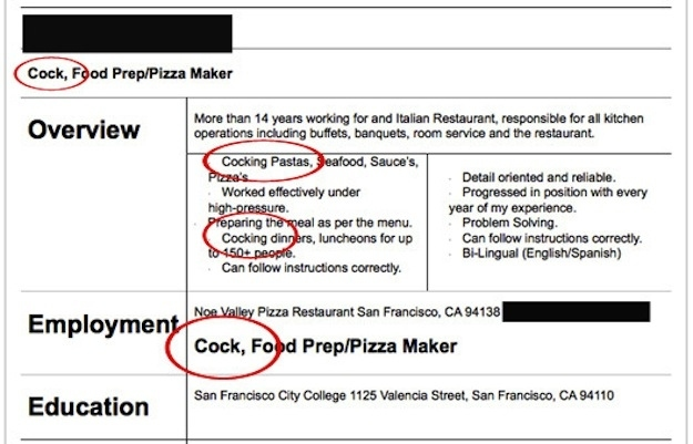 funny resume examples