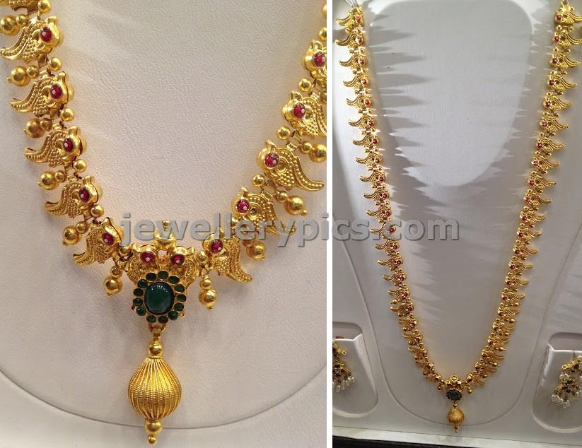 parrot gold haram