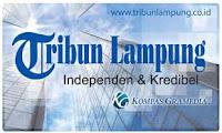 www.tribun lampung.com Situs Berita Online Dari Harian Tribun Lampung
