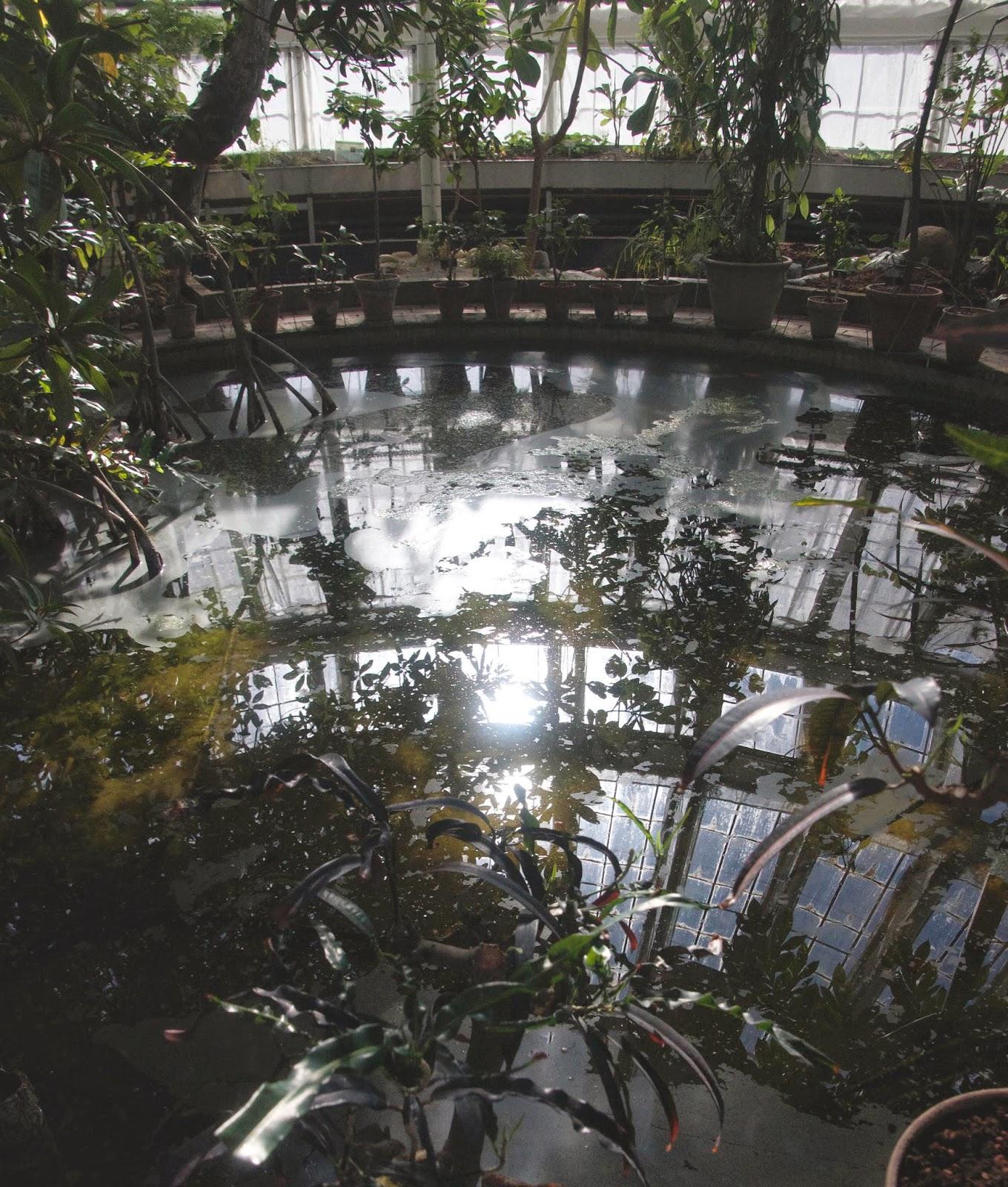 PALMEHUSET - Botanisk Have by Anya Jensen Photography