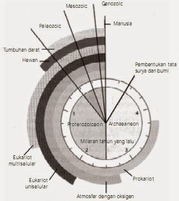 Teori Evolusi Biologi dan Asal-Usul Kehidupan
